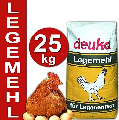 aliment pour poule pondeuse