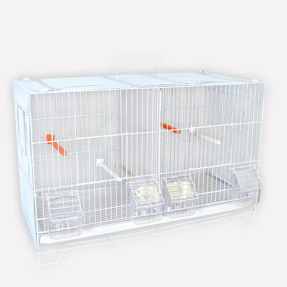 cage d elevage