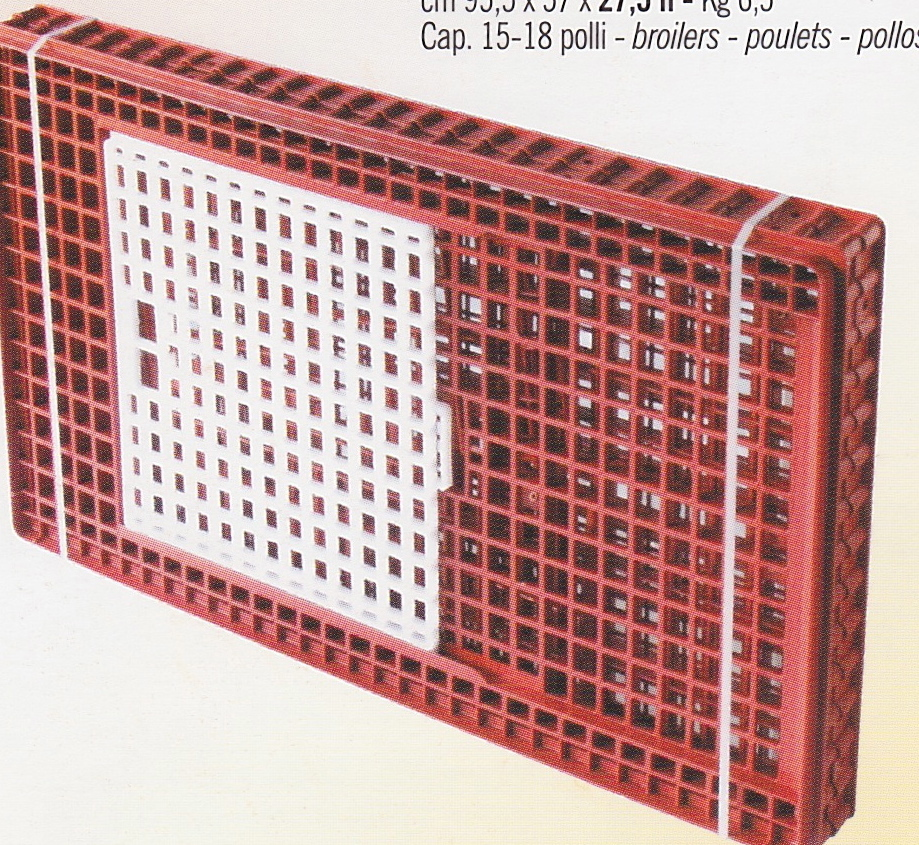 cage de transport volaille