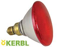 lampe chauffante poussin