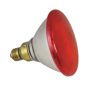 lampe infrarouge poussin