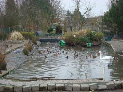 parc a canard