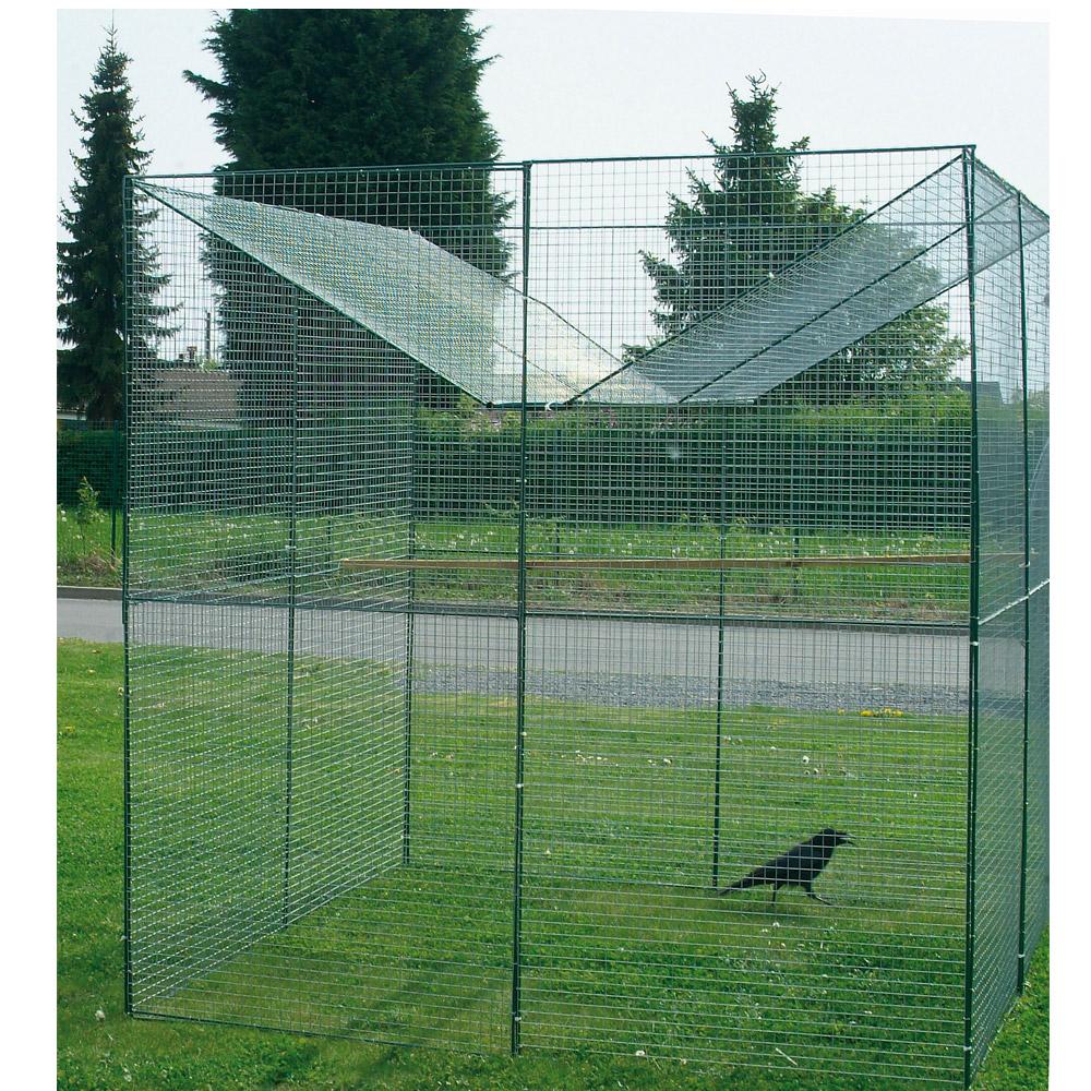 piege a corbeau