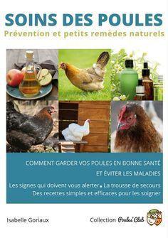 poux rouge poule traitement naturel