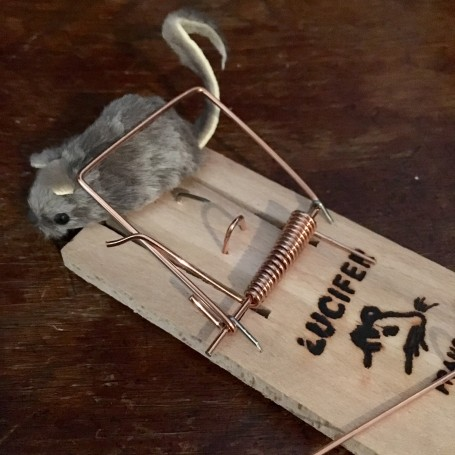 tapette a souris