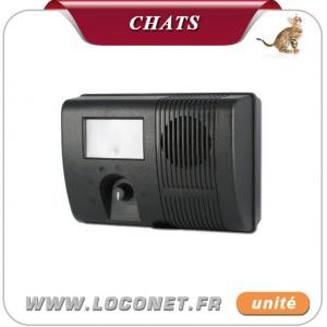 ultrason pour chat