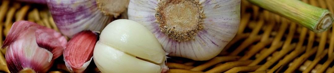 comment traiter l histomonose