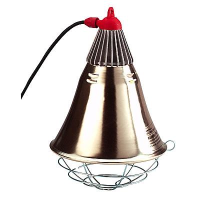lampe chauffante pour poussin