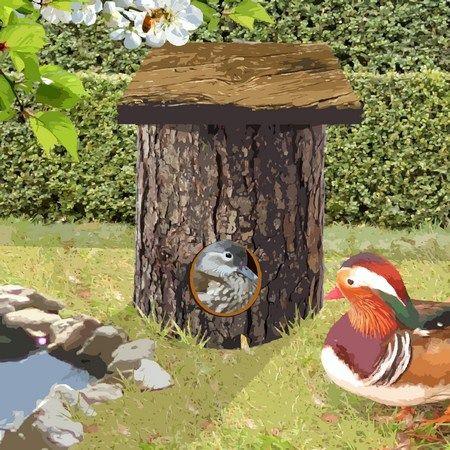 nichoir pour canard mandarin